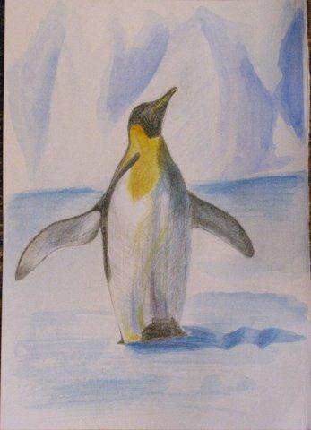 Антарктический птыц пингвин. Рисовала для подружки - она их любит всей душой) Бумага, акварель, цветные карандаши.