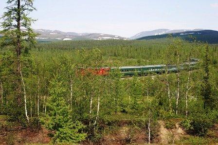 Поезд фоткала сама - не могу же я пройти мимо красно-зелёного состава)